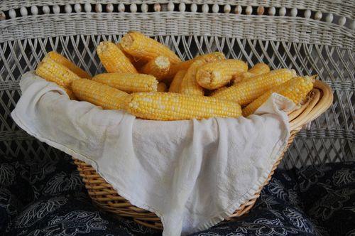 Corn 014