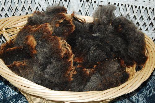 Wool 130