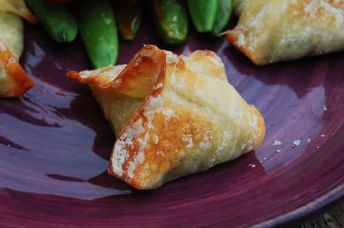 Meatloaf and avocado crab rangoon 024