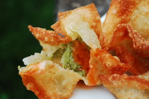 Meatloaf and avocado crab rangoon 020